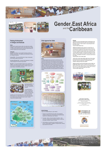 Gender Project Poster