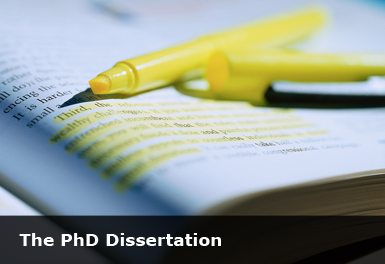 dissertation results writing