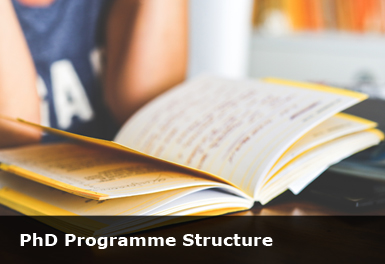 PhD in Education Programme : Faculty of Education