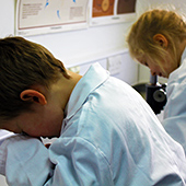 Primary school children using microscopes