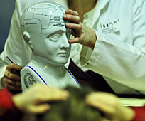 Hands demonstrating using L.N Fowler phrenology head model
