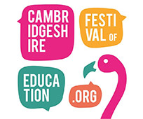 Festival of Ideas pink flamingo poster #flamingle18