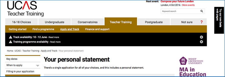 Screenshot of UCAS personal statement web page