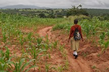 African girl walking to school through a field